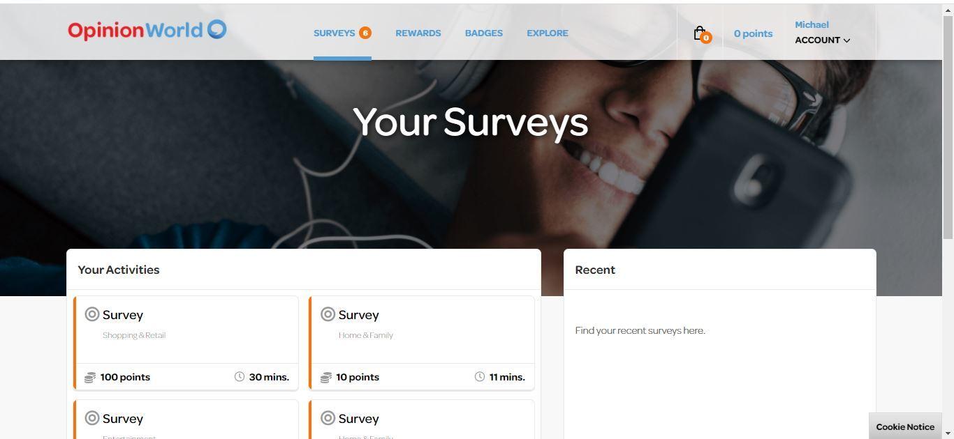 opinion world surveys