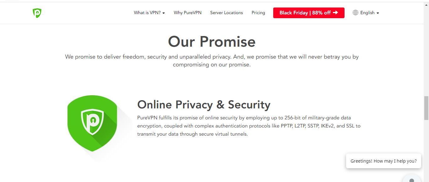 pure vpn promise