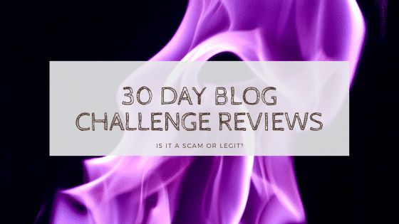 30 day blog challenge reviews post