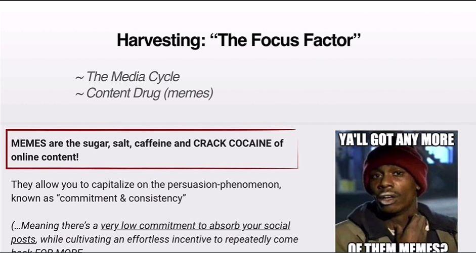meme media cycle
